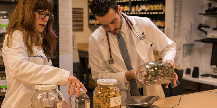Naturopathic doctors in white coats measuring herbs on scale