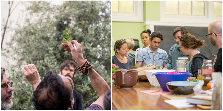 two images, left: students inspecting medicinal plant. right: students in a classroom